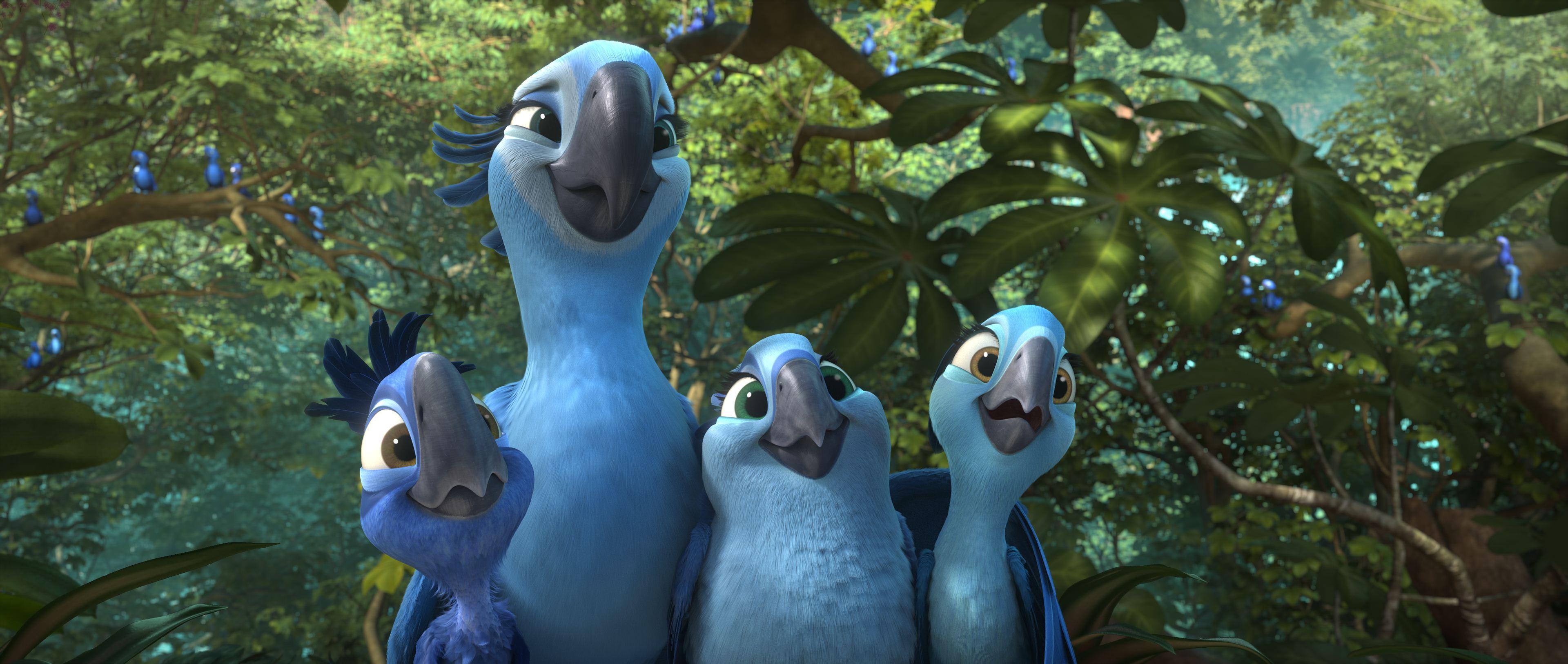 小蓝金刚鹦鹉因里约大冒险知名 已在野外灭绝